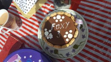 Happy birthday Foxy :)