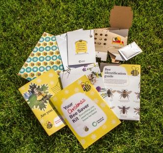 Xmas Bee saver Kit above grass LR